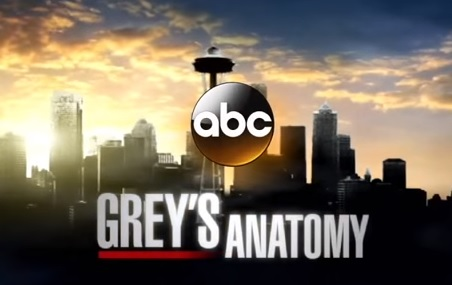 grey's anatomy 12 stagione